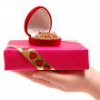 The female hand holding a gift — Stock Photo #1947926