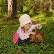 The girl in the forest — Stock Photo