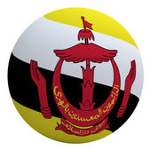 Brunei flag on the ball — Stock Photo