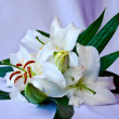 Stock Photo: Lilies