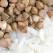 Buckwheat and rice — Stock Photo