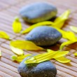 Spa stones with flower petals — Stock Photo