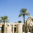 Luxor. Karnak — Stock Photo