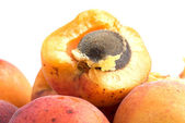 Fresh appetizing apricots — Stock Photo