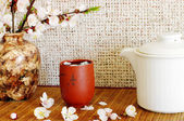 Tea with apricot flowers — Stock Photo