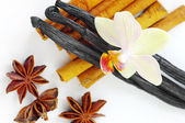Star anise, cinnamon, vanilla — Stock Photo