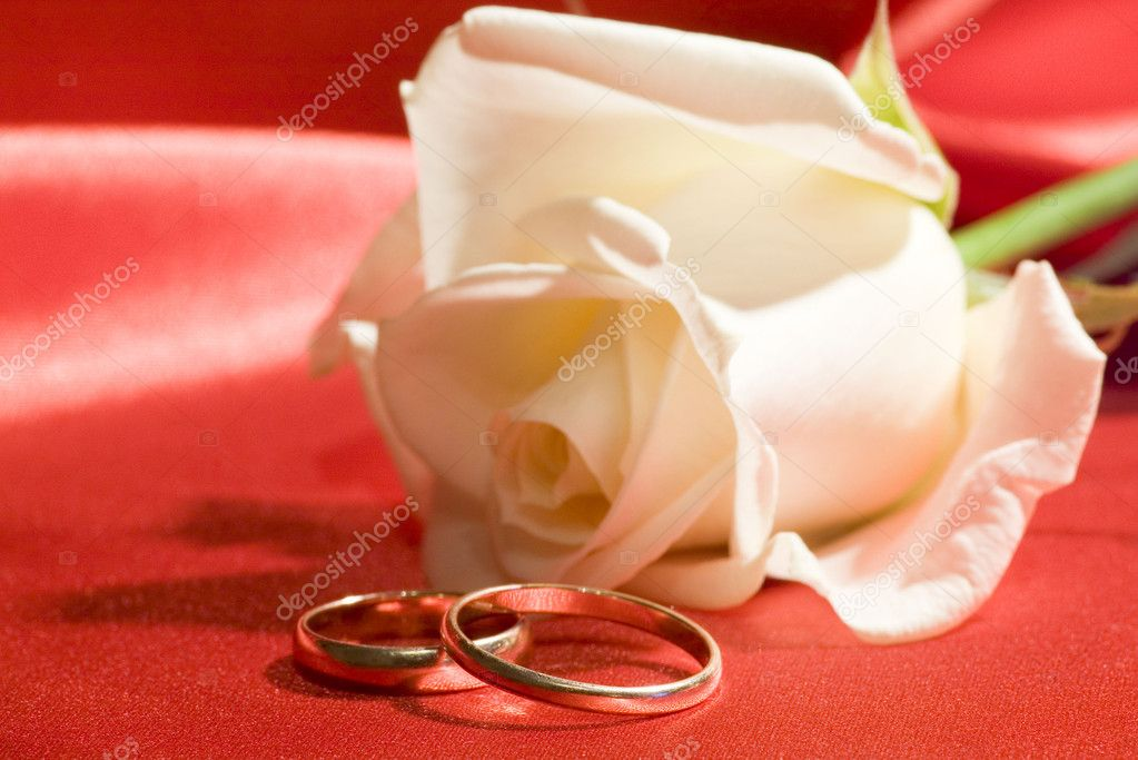 On a photo a rose and wedding rings — Stock Photo #1867520