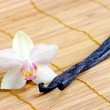 Orchid with vanilla beans - Stock Photo