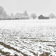 Stock Photo: Winter Farming
