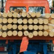 Small Truck Transporting Wood — Stock Photo