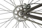 Bicycle Back Wheel — Stock Photo