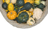 Gourds in a Basket — Stock Photo