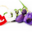 Two hearts with flower, symbol of spring and love — Foto de Stock