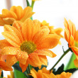 Stock Photo: Bunch of orange chrysanthemum