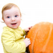 Baby boy playing with pumpkin — Stock Photo