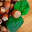 Some hazelnuts with leaves — Stock Photo