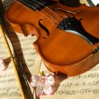 Stock Photo: Violin on music sheet