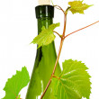 图库照片: Wine bottle with young grape vine branch