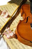 Violin on music sheet — Stock Photo