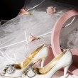 图库照片: Wedding shoes, box and veil