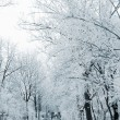 Foto Stock: Winter alley