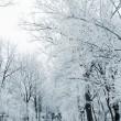 zaułek zima — Zdjęcie stockowe