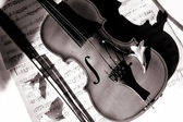 Violin and feedle on music sheet — Stock Photo