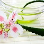 Aloe vera leaf and oil — Stock Photo #2219137