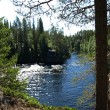 Stock Photo: Oulanka