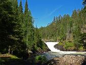 Kitkajoki River in Oulanka National Park in Finland — Stockfoto