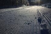 Snow line — Stock Photo