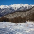 Red glade, Sochi, Krasnaya polyana — Stock Photo #2018797