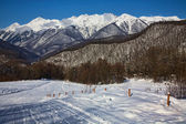 Red glade, Sochi, Krasnaya polyana — Stock Photo