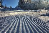 Snow line — Stok fotoğraf