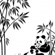 Panda - Stock Vector