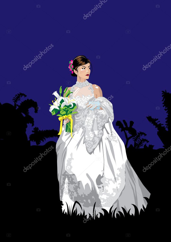 The Asian woman in a suit of the bride at night. — Vettoriali Stock  #1851692