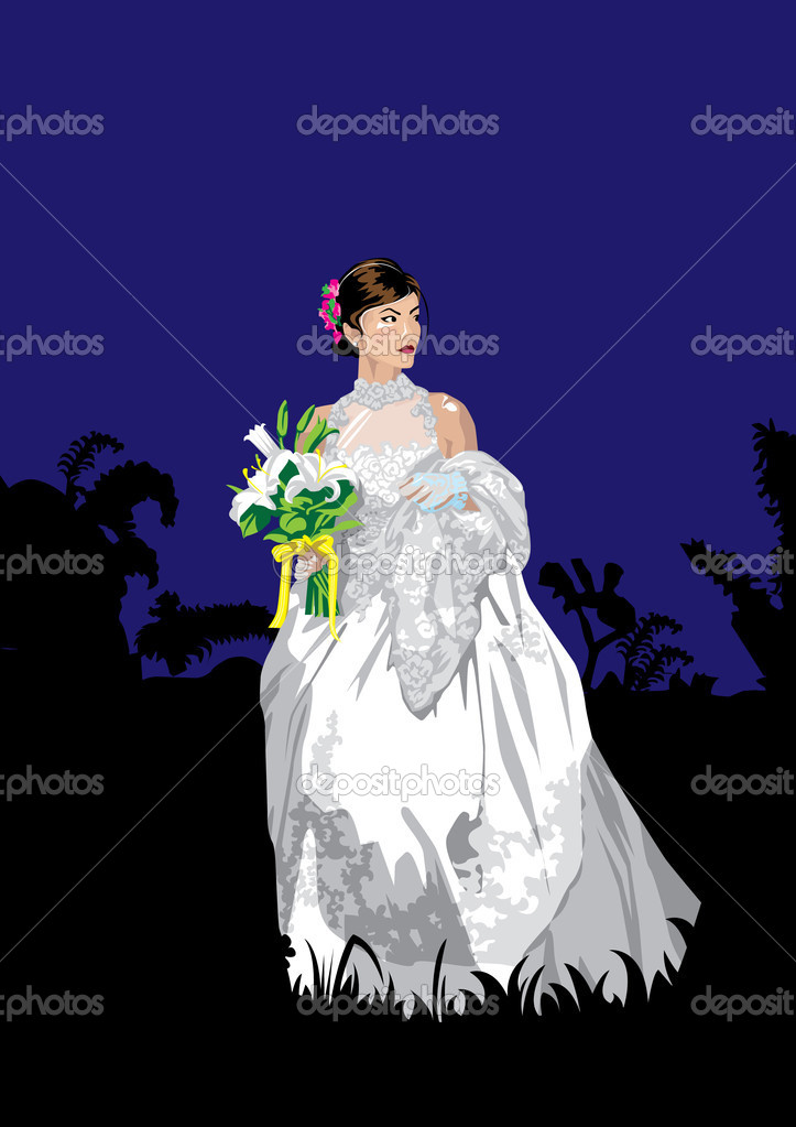 The Asian woman in a suit of the bride at night.  Imagens vectoriais em stock #1851692