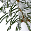 Frozen water drops — Stock Photo