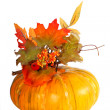 Stock Photo: Pumpkin