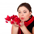 Flying red rose petals — Stock Photo