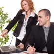 Business colleagues in office — Stock Photo