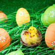Stock Photo: Easter eggs and chickens in grass