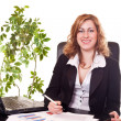 Businesswoman in office — Stock Photo #2627083