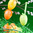 Nest with colorfull easter eggs — Stockfoto