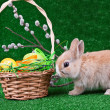 Stock Photo: Nest with easter eggs and rabbit