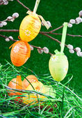 Nest with colorfull easter eggs — Stock Photo