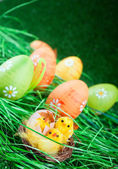 Easter chicken and colorful eggs — Stock Photo
