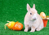 Easter decoration, rabbit and eggs — Stock Photo
