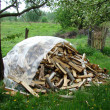 Stock Photo: Firewood stacked on grass