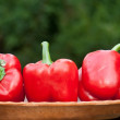 Fruits of red paprika — Stock Photo